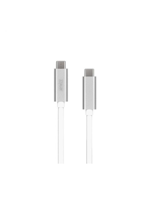 Artwizz - Cabo 3.1 USB-C - USB-C (silver)